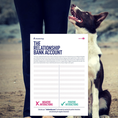 Relationship bank account ledger