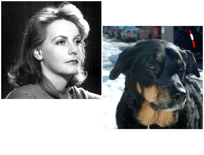 Greta Garbo and Sasha the dog want to be alone