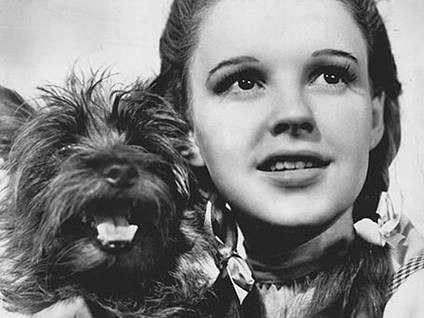 Dorothy and her dog Toto